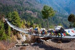 Yak auf der Brücke in Nepal stockfotos