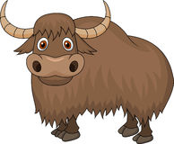 Yak Cartoon Royalty Free Stock Image
