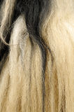 Yak hair texture Stock Images