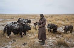 Yak herder Στοκ φωτογραφίες με δικαίωμα ελεύθερης χρήσης