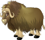 Yak royalty free illustration