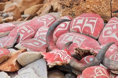 Yak skulls decorated with Buddhist mantras Royalty Free Stock Image