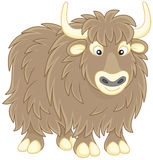 Yak Stock Photos