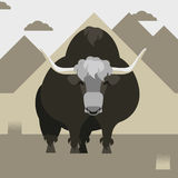 Yak. Vector illustration with wild Yak Royalty Free Stock Photography