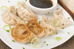 Yaki-Gyoza Stock Photo
