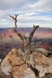 Yaki Point, Grand Canyon stock photos