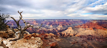 Yaki Point Panorama Royalty Free Stock Images