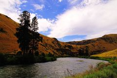 Yakima River in Yakima Canyon Stock Afbeeldingen