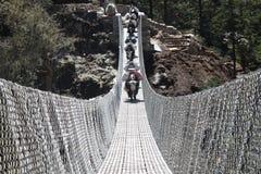 Yaks over a suspension bridge in Tengboche, Everest Base Camp trek, Nepal royalty free stock image