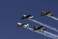 Yaks in vorming royalty-vrije stock foto