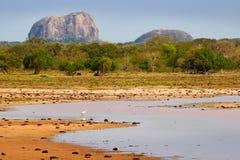 Yala国家公园,斯里兰卡,亚洲 美好的风景、湖有水花的和老树 森林在斯里兰卡,大石头ro 免版税库存图片