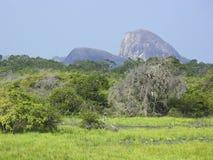 Yala landscape Stock Image