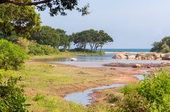 Yala National Park in Sri Lanka Royalty Free Stock Photo