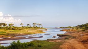 The Yala National Park, Sri Lanka Royalty Free Stock Photography