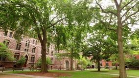 Yale Campus anziano video d archivio