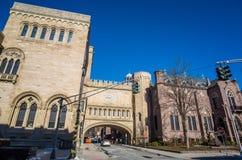 Yale universitet Arkivfoton
