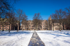 Yale university buildings Royalty Free Stock Photo