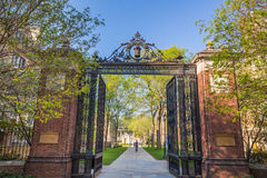 Yale university buildings Stock Photos