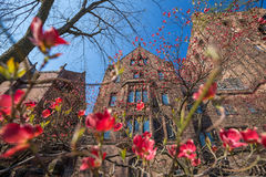 Yale university buildings Royalty Free Stock Photo