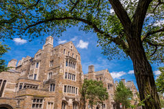 Yale university buildings in summer blue sky in New Haven, CT US Stock Images