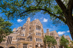 Yale university buildings in summer blue sky in New Haven, CT US Stock Photography