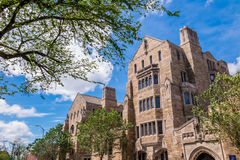 Yale university buildings in summer blue sky in New Haven, CT US Stock Photos