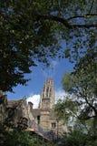 Yale University Harkness Memorial Tower fotos de archivo libres de regalías