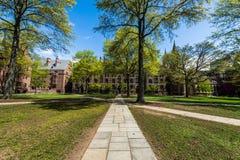 Yale University i New Haven Connecticut Royaltyfri Bild