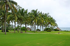 Yalong Bay in Sanya, Hainan seaside green Stock Photography