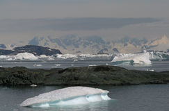 Yalour Islands, Antarctica Stock Photos