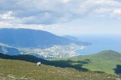 Yalta com AiPetri Fotografia de Stock Royalty Free