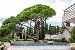YALTA, DE KRIM - NOV. 2014: Hotel yalta-Intourist royalty-vrije stock afbeelding