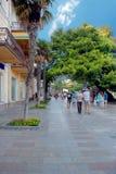 yalta Område av invallningen som är destinerat för att gå Royaltyfri Fotografi