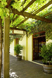 Yalumba Estate Winery, located near Angaston, South Australia in Royalty Free Stock Images