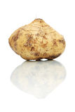 Yam Bean Stock Photography