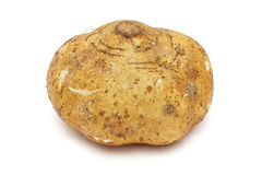 Yam Bean Royalty Free Stock Photography