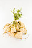 Yam bean Royalty Free Stock Photos