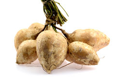 Yam bean or turnip Royalty Free Stock Photography