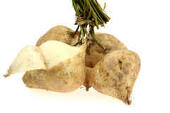 Yam bean or turnip Royalty Free Stock Image