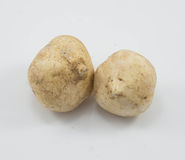 Yam bean Royalty Free Stock Photo