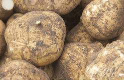 Yam group Royalty Free Stock Photography