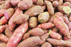 Yam. Heap of Yam prepare for sale Stock Images