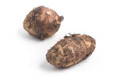 Yam, Inhame, Cara. Colocasia esculenta Stock Images
