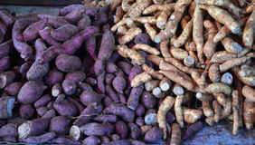 Yam Purple and yellow Stock Photos