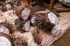 Yam sold on african market Stock Photo