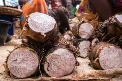 Yam sold on african market Royalty Free Stock Image