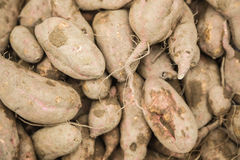 Yam stacked in the market Stock Images