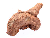 Yam vegetable Royalty Free Stock Photos