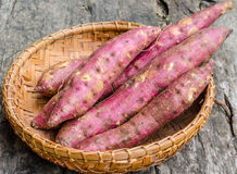 Yam in wicker basket Royalty Free Stock Photos
