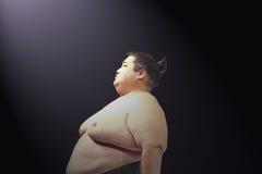 Yama en la demostración de lucha del sushi del sumo en el teatro de WaMu Fotos de archivo